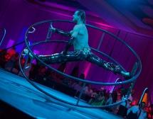 mdc-circus-43